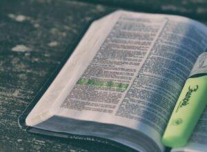 słowa i wiedza